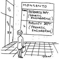 GMO field trial 4.jpg